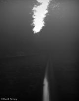 <h5>Train Tracks</h5>